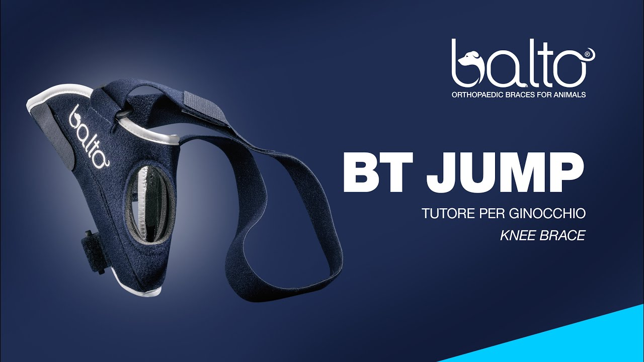 bt-jump-orthopaedic-brace-for-knee-for-dogs