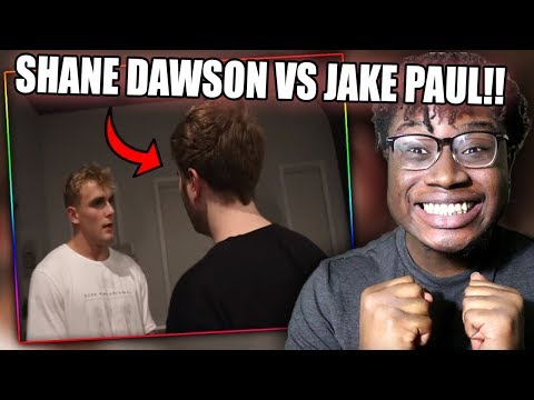 SHANE DAWSON CONFRONTS JAKE PAUL!   The Mind of Jake Paul - Extended Trailer Reaction!