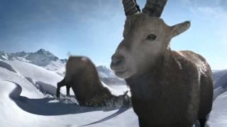 Jung von Matt/Limmat: Graubünden Webcam