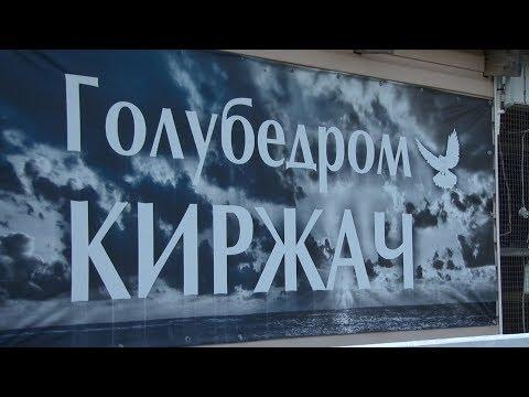 Голубедром Киржач единственный в России имеет международный уровень