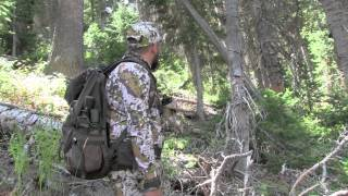 2015 Utah Archery Elk Hunt Rocky Mountain Rednecks