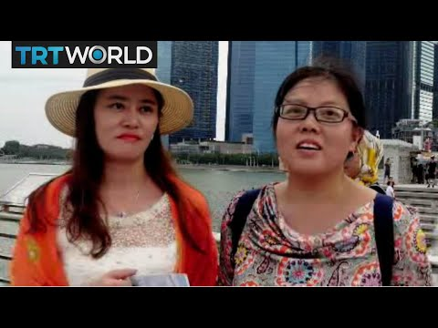 Singapore Tourism: Chinese chase Tibetan antelopes in Singapore