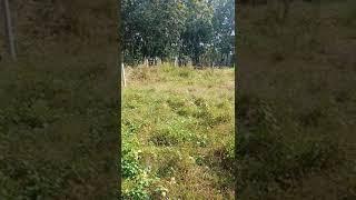 Bán đất xã phú hoà đông  5x18 giá 740tr giá rẻ