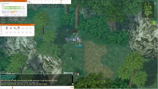 Ragnarok Online Semi-Geared Leveling Guide: Thief to Job Level 40