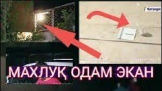 БУ МАХЛУҚ одам эканлиги аниқланди. Nasim xolov Islombek. Xbox Series S-World Premiere Reveal