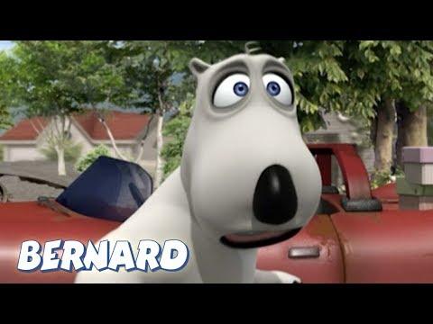 Bernard Bear | The Car AND MORE | 30 min Compilation | Cartoons for Children