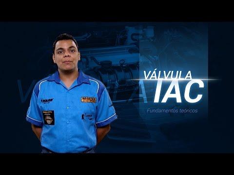 Válvula IAC / Descripción y funcionamiento (diagramas)