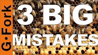 3 Mistakes Beginning Beekeepers Make - GardenFork