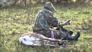 Панты, деньги, две пилы....(Это видео иллюстрирует наш рассказ о сборе пантов в тундре.