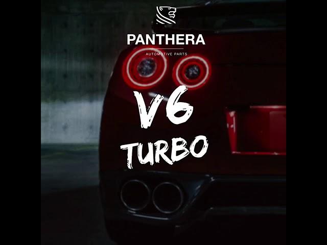 PANTHERA LEO Active Sound 4.0 - V6 Turbo