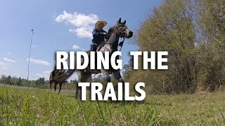 Low Country Cowboys  Trail Riding