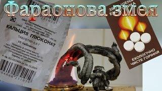 Фараонова змея (Сухое горючее + Кальций глюконат)