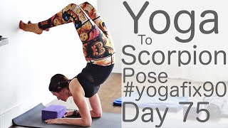 30 Minute Yoga Flow Vinyasa (to Scorpion pose) Day 75 Yoga Fix 90 | Fightmaster Yoga Videos