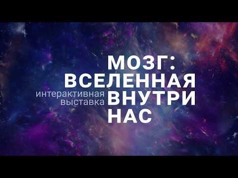Мозг вселенная внутри нас - Татьяна Черниговская