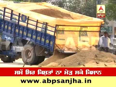 Paddy Procurement: Late payment leads to loss of Rs. 180 crore to Punjab farmers- Punjab Mandi Board
