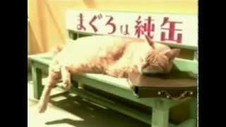 Японская реклама КОРМ ДЛЯ КОШЕК