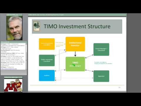 TIMOs and REITs: The new face of industrial forestry