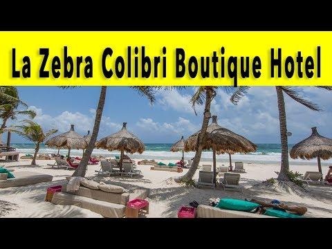 La Zebra Colibri Boutique Hotel Riviera Maya 2018