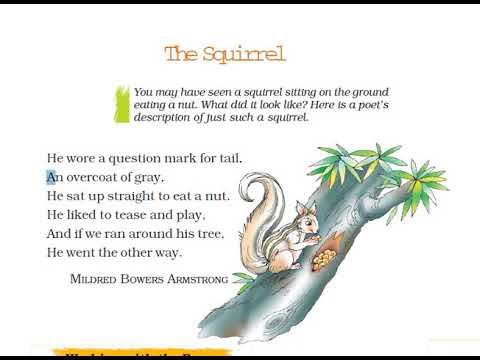 Class 7 Honeycomb Poem The Squirrel Hindi Explanation