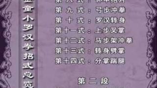 Jin Tong Xiao Luohan Quan - from Liu Zhen Hai