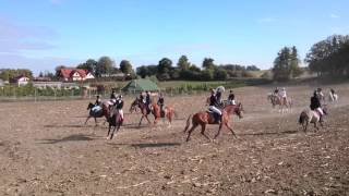 Hubertus 2015 Stajnia Ulkowy - Kardyl