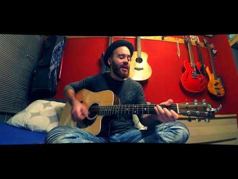 Stephen Swartz - Bullet Train (Cover by Jink)
