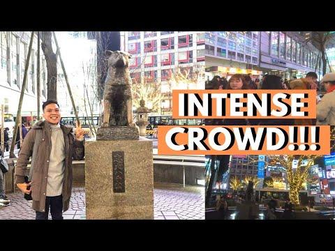 EXPERIENCING SHIBUYA CROSSING & VISITING HACHIKO STATUE | TOKYO 2020