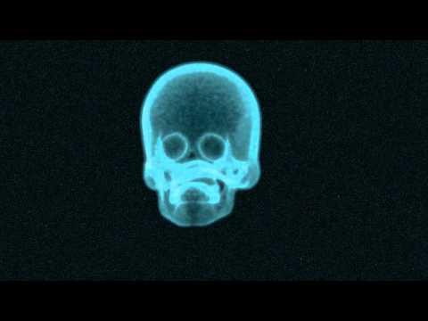 x-ray maya test v01 ( skull )