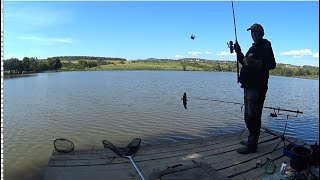 Рыбалка в Закарпатье: канадские сомы атакуют!