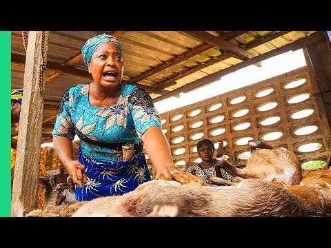 Extreme Bushmeat!! Nigeria's WILD Animal Markets!!