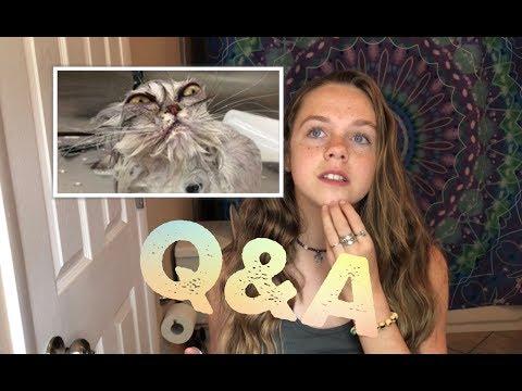 My first Q & A