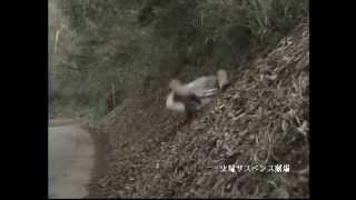 スタントウーマン花田奈美の2010年プロモーションビデオです。 2010 sho...