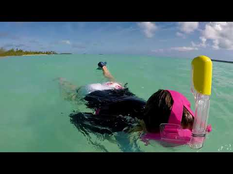 cook island aitutaki swimming