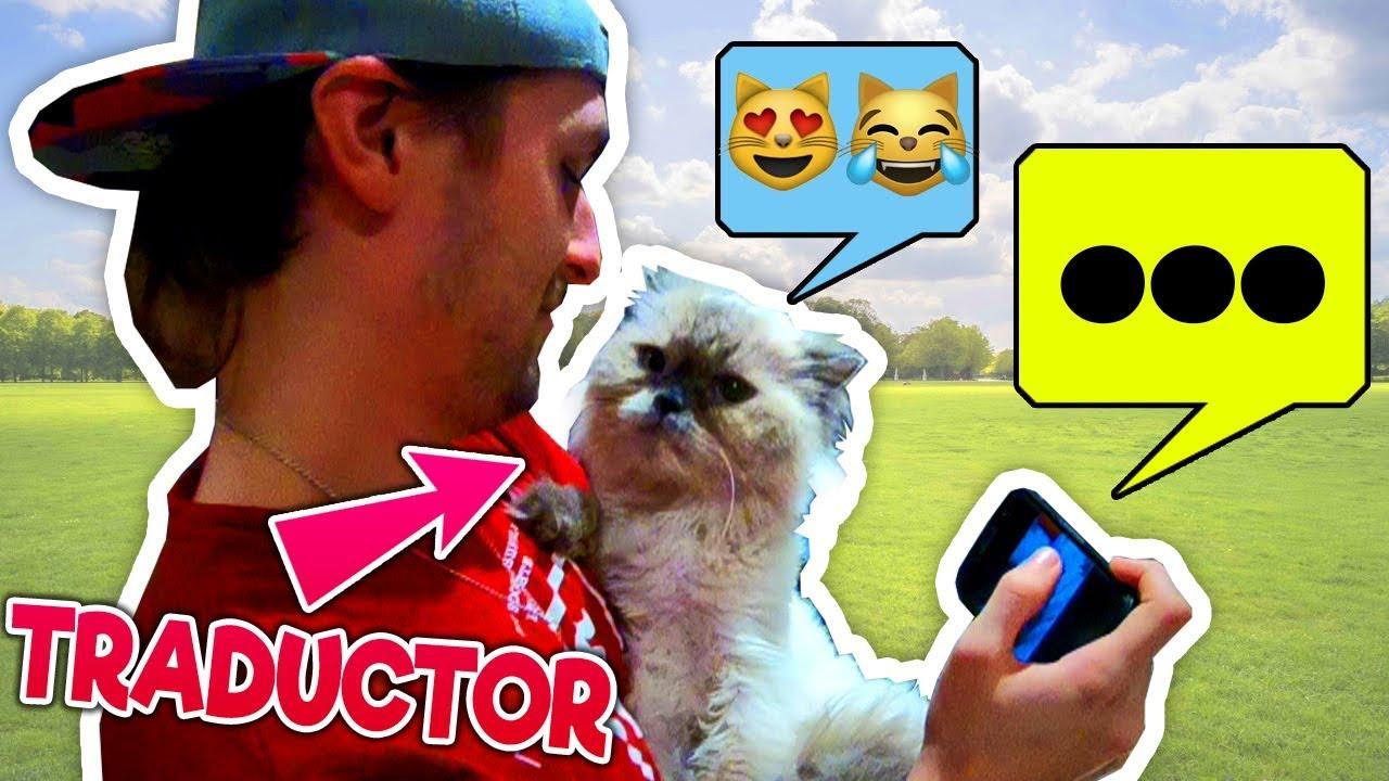 uso-un-traductor-de-humano-gato-para-hablar-con-mi-gato