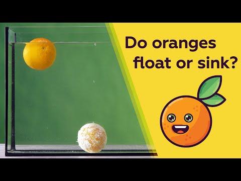 Does An Orange Float Or Sink?