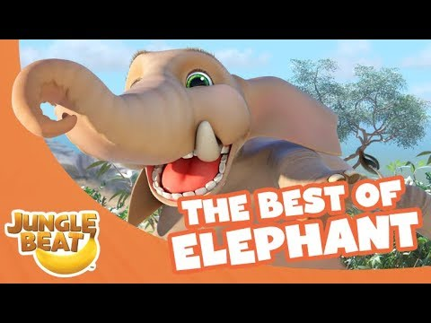 The Best of Elephant - Jungle Beat Compilation [Full Episodes]