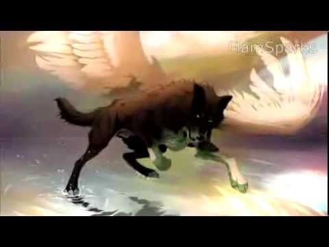 Anime Wolves - Escapist