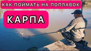 Как поймать карпа Советы от мастера спорта Рыбалка 2021