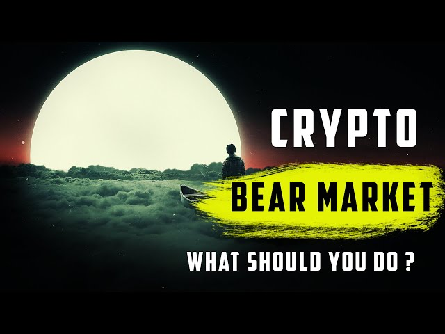 What To Do In a Crypto Bear Market ?
