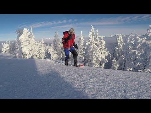Snowshoe Mt. Baker Cranbrook B.C. Canada
