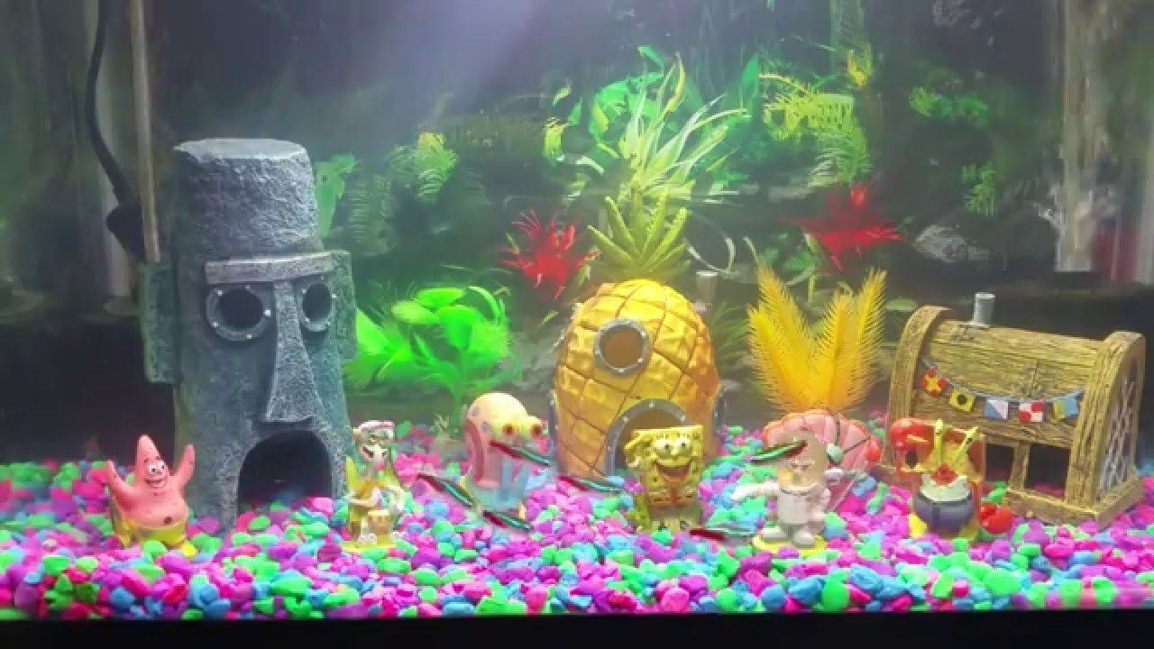 Spongebob bikini bottom fish tank aquarium youtube for Youtube fish tank