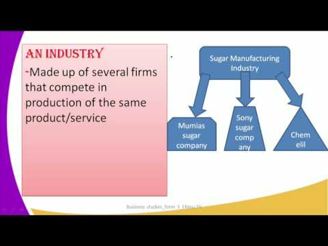 Form3 Business Studies Lesson7 Size and Location of a firm Firm and Industry