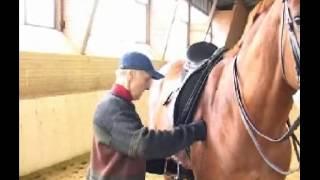Конный спорт 80 лет И.М. Кизимову1 часть 14;45