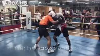 【ボクシング】向井寛史vs奥本貴之 スパー 2017/03/01
