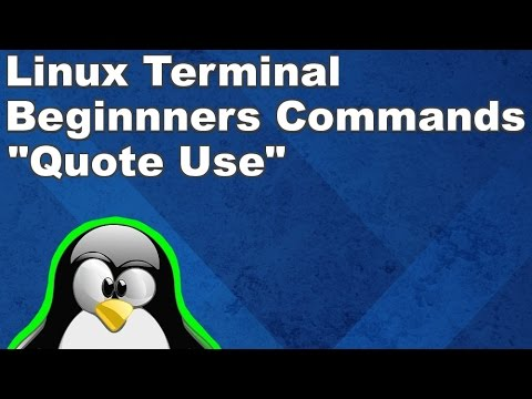 Linux Terminal for Beginners Commands 6: Using Quotes