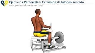 extension de talones sentado ejercicios pantorrilla