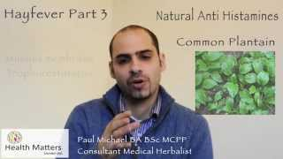 Health Matters London - Hayfever Part 3: Natural anti-histamines