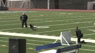 Los Angeles County Police K9 Association
