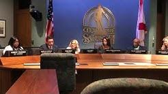 New Sarasota Mayor Liz Alpert addresses the City Commission