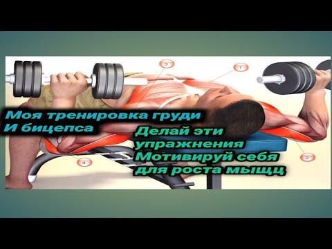 Моя тренировка груди и бицепса